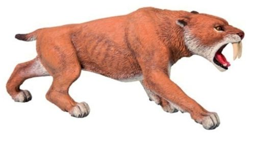Smilodon Saber Cat Model